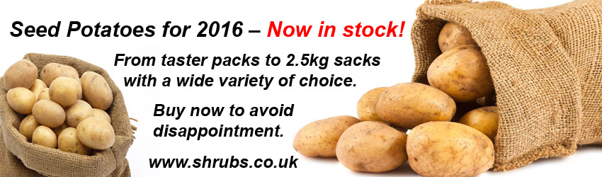 Plant seed potatoes NOW...  available on-line and in-store today!